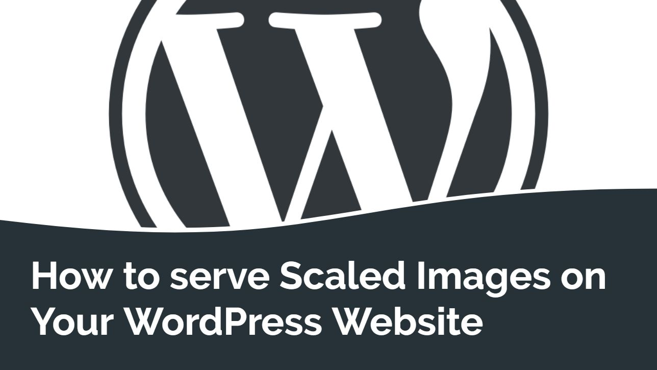 How to serve Scaled Images on Your WordPress website