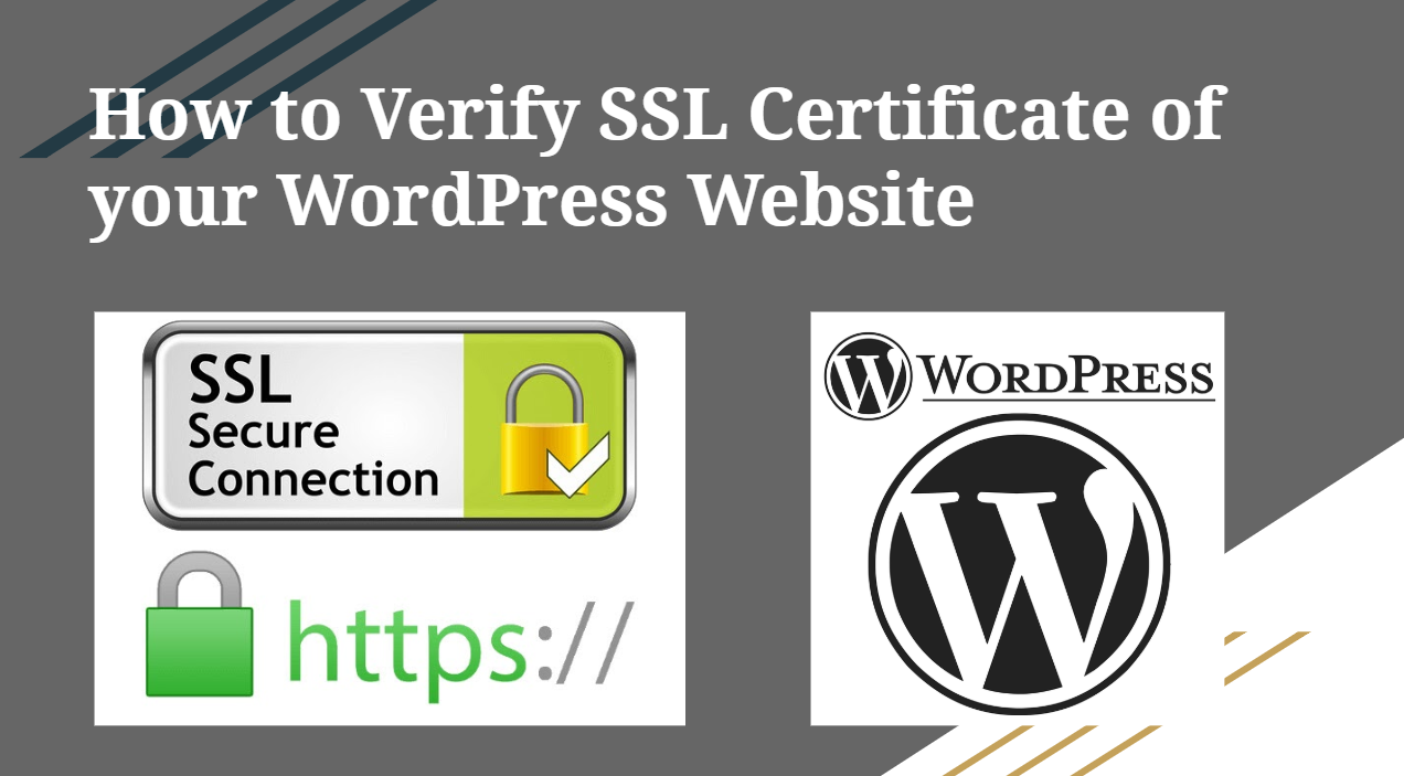 How to Verify SSL Certificate on your WordPress website